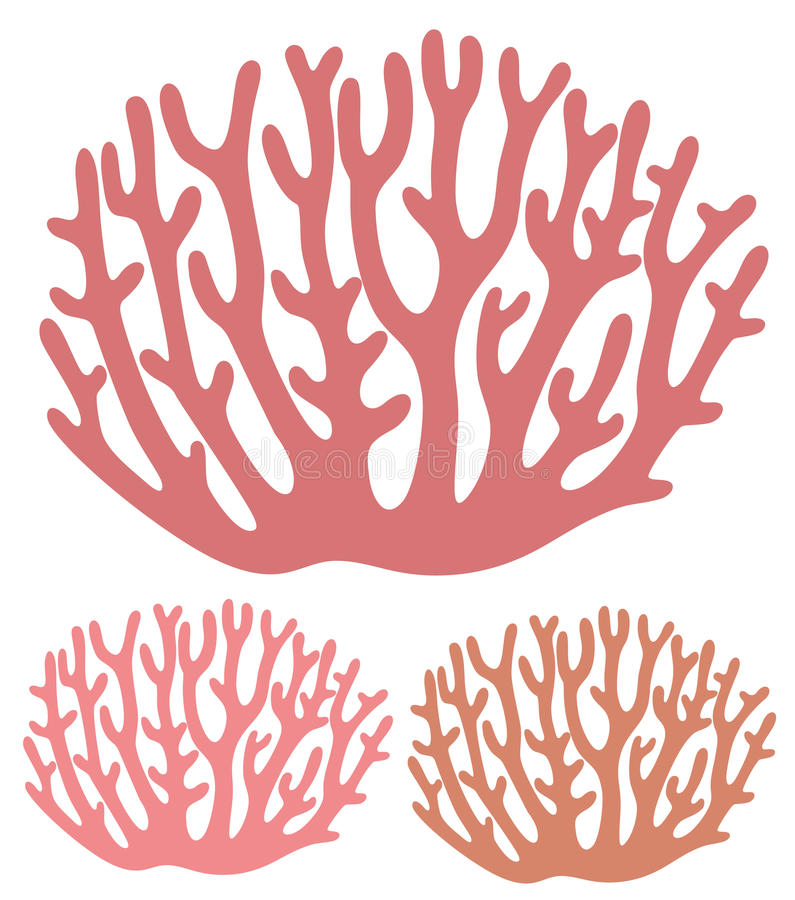 Coral. Vector illustration (EPS 10) stock illustration
