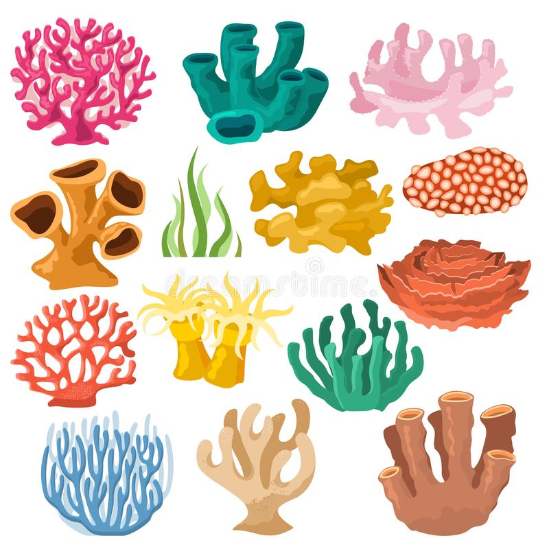 Coral vector sea coralline or exotic cooralreef undersea illustration coralloidal set of natural marine fauna in ocean stock illustration