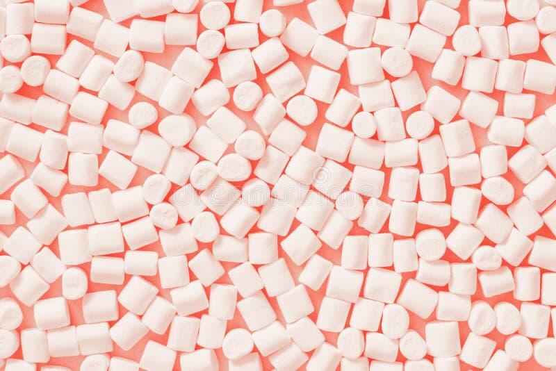 Coral vivo Color del año 2019 Melcochas blancas en fondo de moda del pastel del color imagenes de archivo