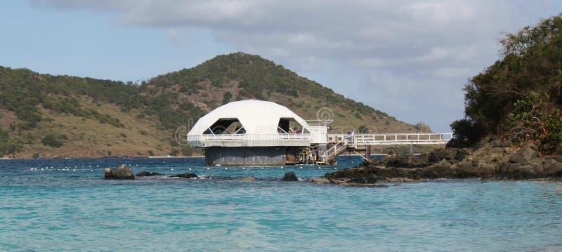 Coral World Aquarium, St Thomas, U S Islas Vírgenes fotos de archivo
