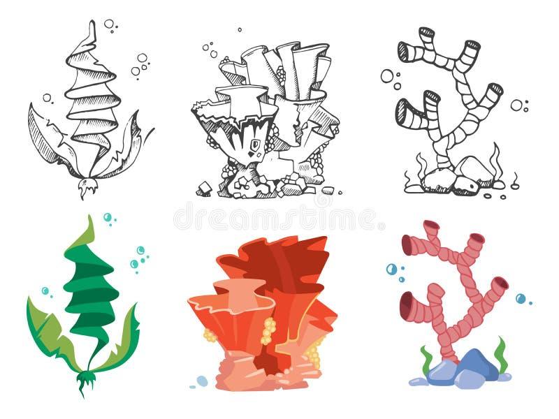 Coralli, alghe e piante subacquee della fauna selvatica illustrazione vettoriale