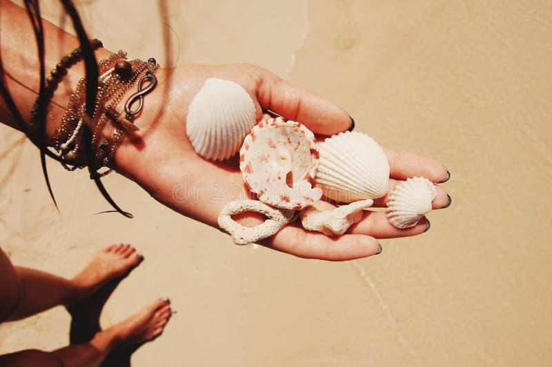 Coralli e conchiglie a disposizione con i braccialetti fotografie stock