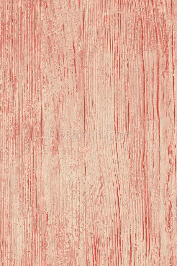 Corallo di legno del whie e blu di vecchio lerciume del fondo bitonale immagine stock libera da diritti