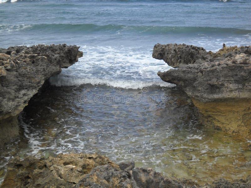 Corallo indossato Wave immagine stock libera da diritti