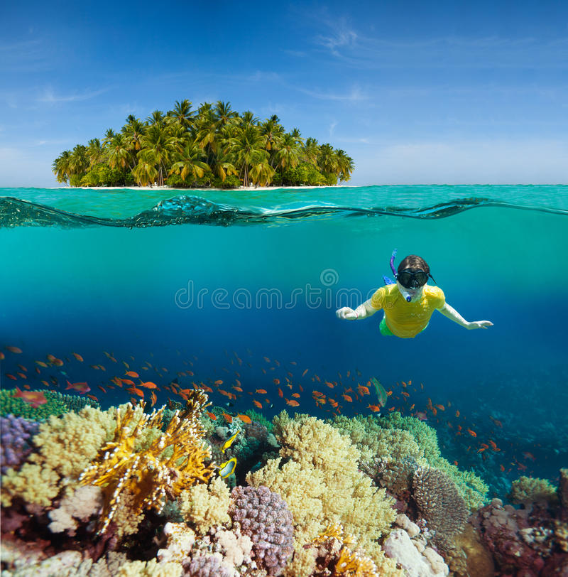 Corals, diver and palm island. Half underwater shoot