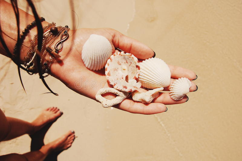 Corals and seashells in hand with bracelets stock photos