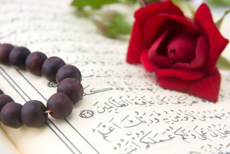 Coran et fleur rose image libre de droits