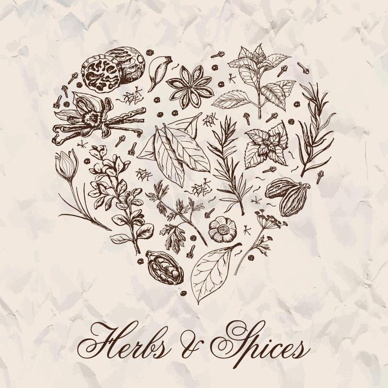 Corazón aislado de las especias y de las hierbas ilustración del vector