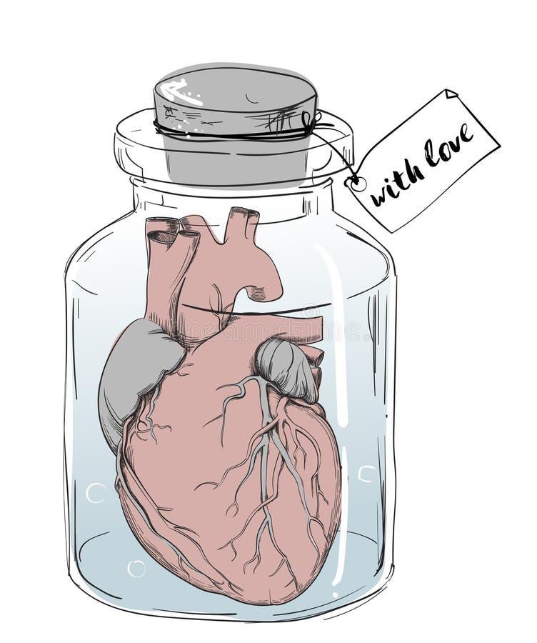 Corazón - broma divertida de la anatomía stock de ilustración