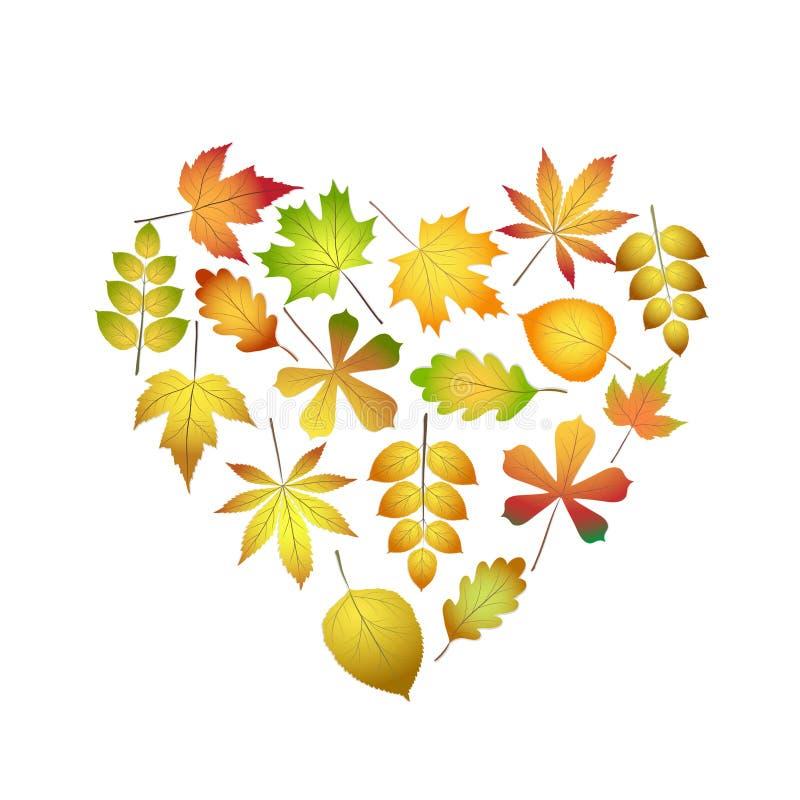 Corazón colorido brillante de las hojas de otoño para el diseño en el ejemplo blanco, común del vector ilustración del vector