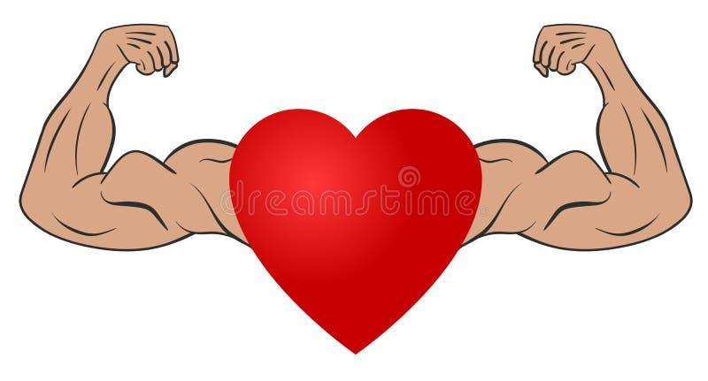 Corazón Con Los Brazos Musculares Ilustración del Vector ...