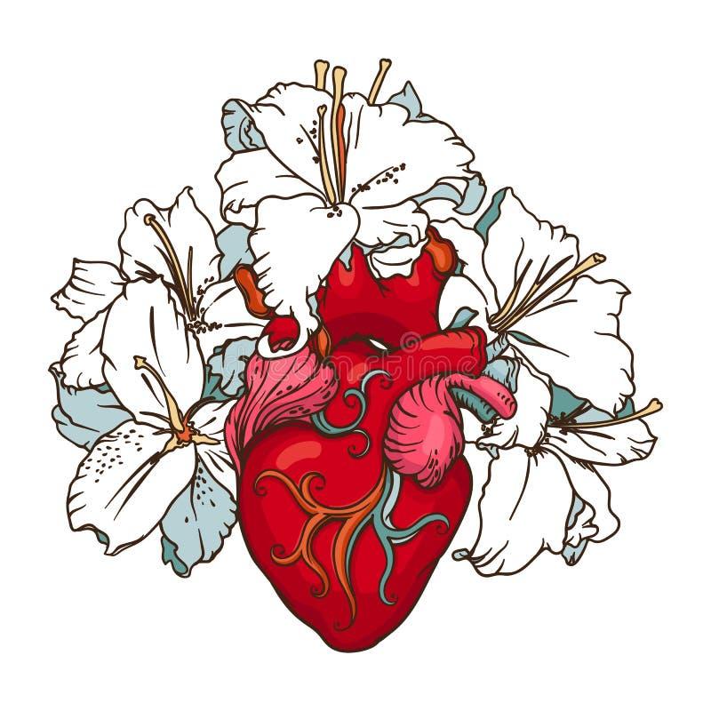 Corazón Con Los Lirios Blancos En Estilo Romántico Concepto ...