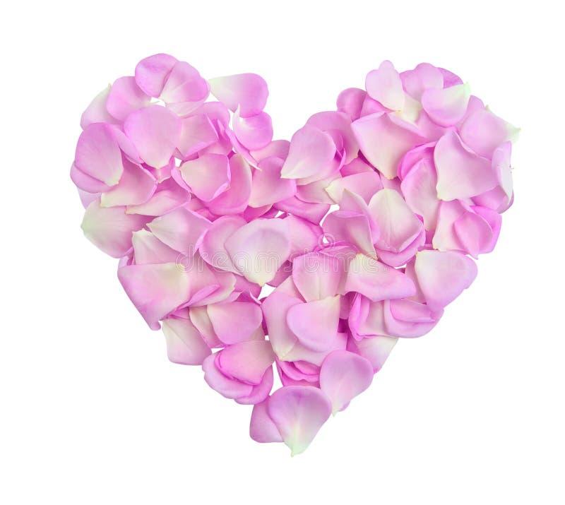 Corazón con los pétalos rosados imagenes de archivo
