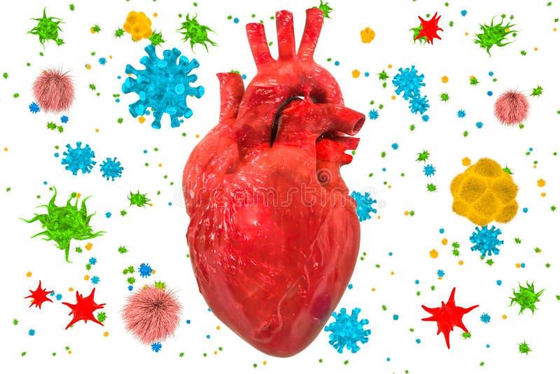 Corazón con los virus y las bacterias Concepto de la enfermedad card?aca, representaci?n 3D stock de ilustración