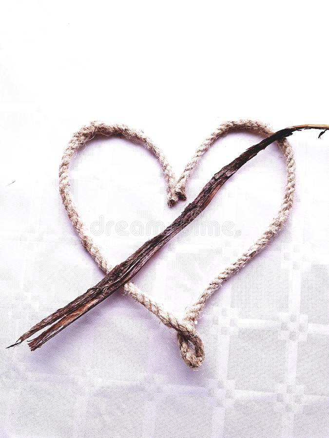 Corazón de Cypress fotos de archivo libres de regalías