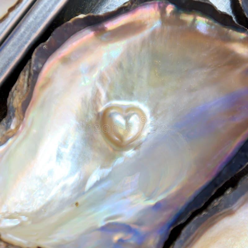 Corazón de la forma de la perla imagen de archivo libre de regalías