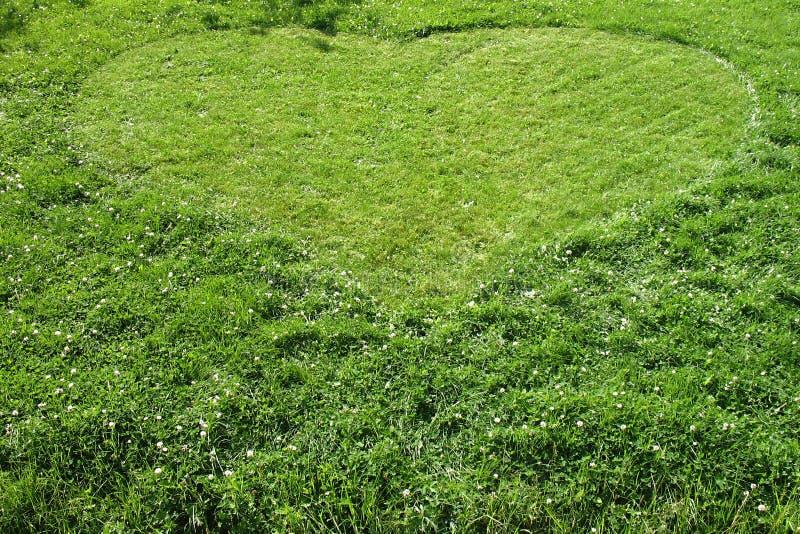 Corazón de la hierba imagenes de archivo