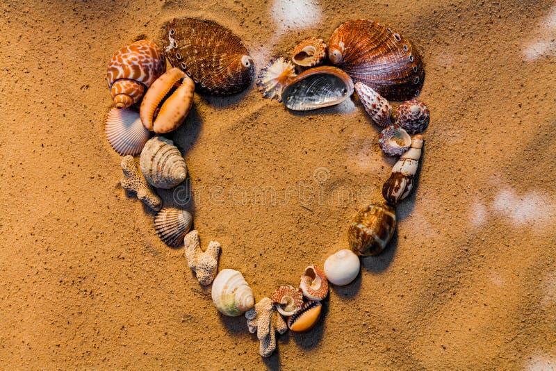 Corazón de las cáscaras del mar en una playa arenosa Fondo foto de archivo