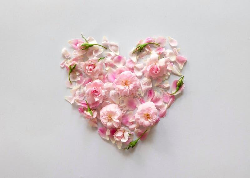 corazón de los pétalos de rosas rosados foto de archivo libre de regalías