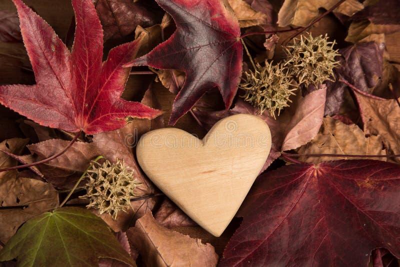 Corazón de madera en otoño fotografía de archivo
