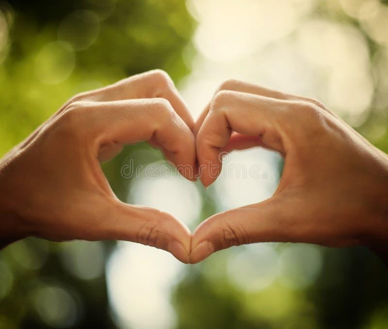 Corazón De Manos Humanas Como Símbolo Del Amor Imagen de archivo ...