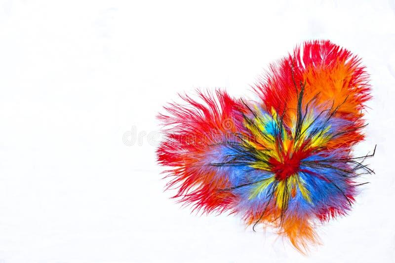 Corazón de plumas fotos de archivo
