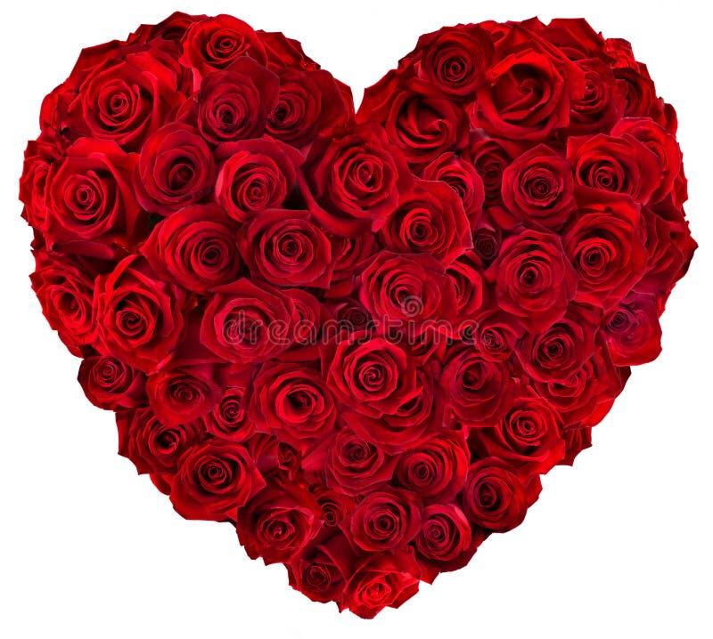 Corazón de rosas rojas fotografía de archivo