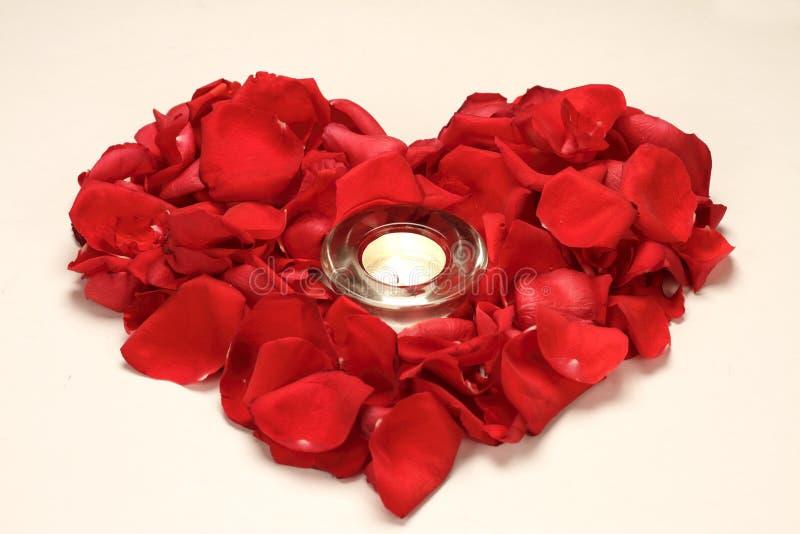 Corazón de Rose imagenes de archivo