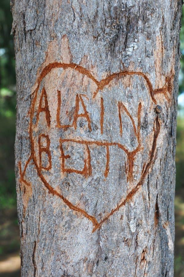 Corazón del amor con el mensaje en un árbol imagenes de archivo
