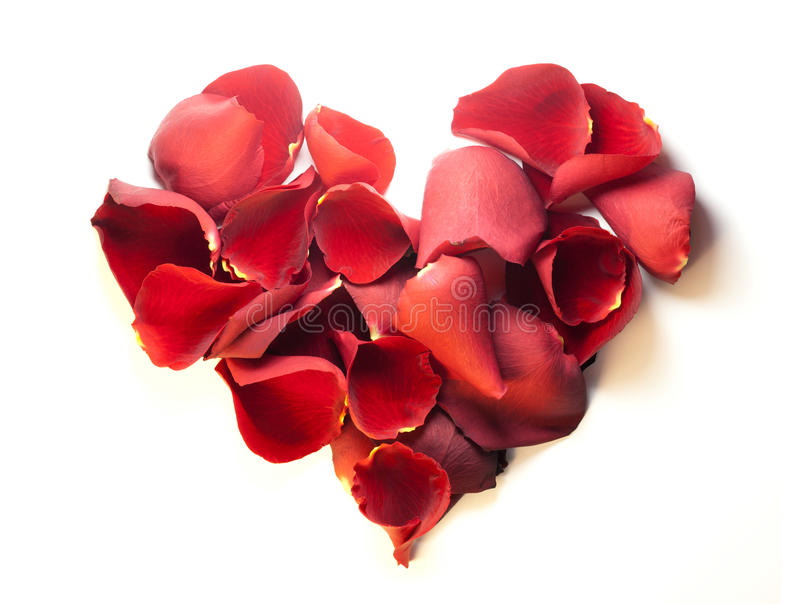 Corazón del pétalo de Rose imágenes de archivo libres de regalías