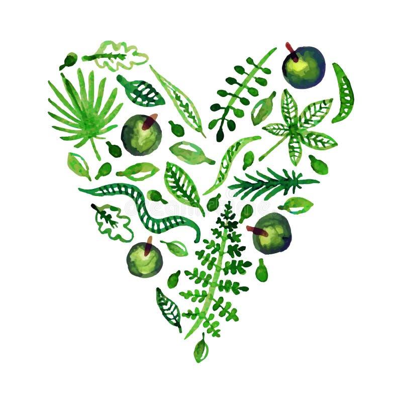 Corazón del vector de la naturaleza de la acuarela con las hojas, las manzanas y otras plantas (verde) Perfeccione para las invit stock de ilustración