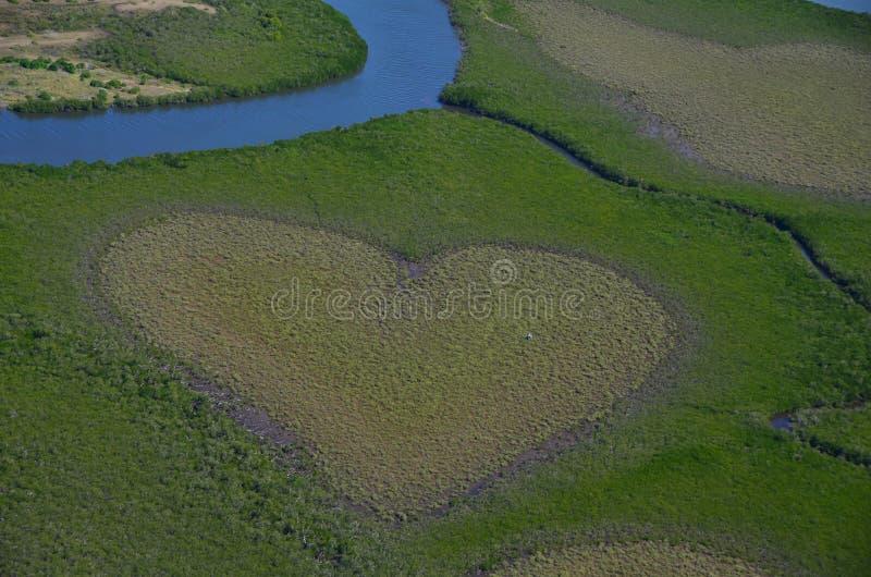 Corazón famoso del voh en Nueva Caledonia imágenes de archivo libres de regalías
