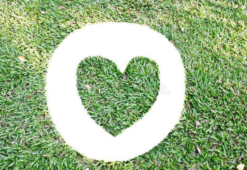Corazón, fondo de las hierbas foto de archivo libre de regalías