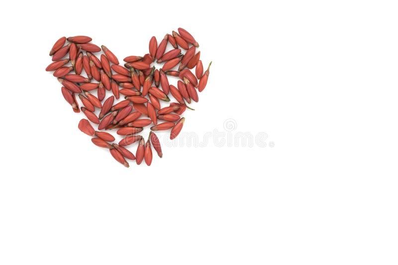 Corazón hecho de flores rojas fotos de archivo