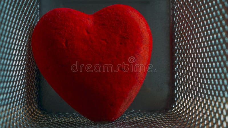 Corazón herido rojo del terciopelo en Mesh Cage Amor, concepto casero de la violencia, de la soledad, de la libertad y de la angu imagen de archivo libre de regalías