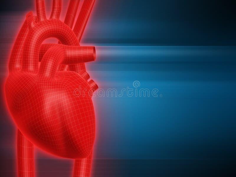 Corazón humano libre illustration