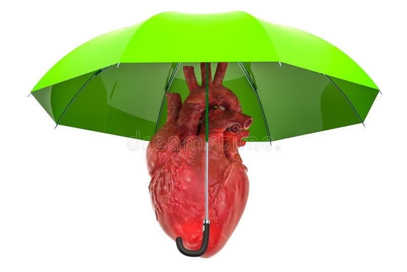 Corazón humano debajo del paraguas, corazón proteger concepto representación 3d ilustración del vector