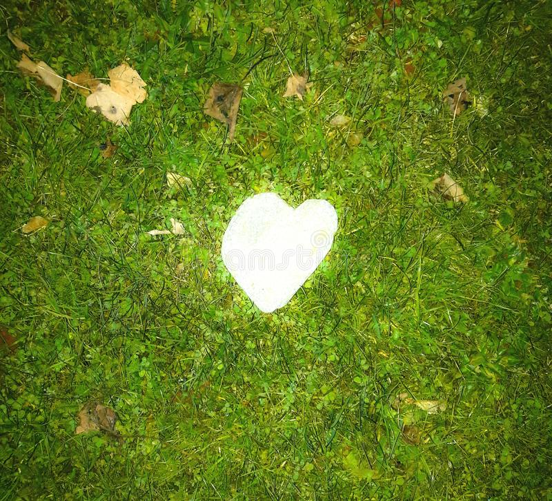 Corazón que brilla intensamente en la hierba imagenes de archivo