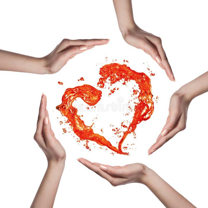 Corazón Rojo Del Chapoteo Del Agua Con Las Manos Humanas Aisladas En ...