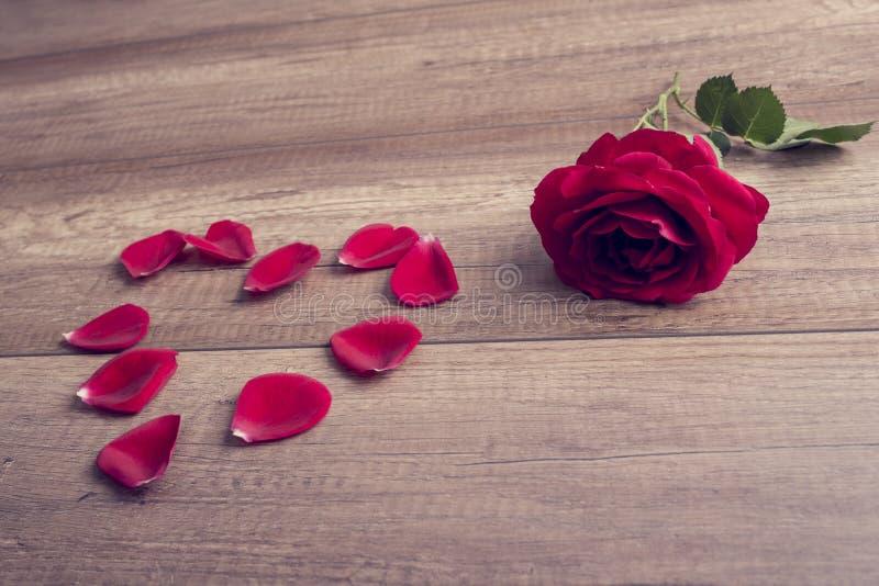 Corazón romántico de la rosa y del pétalo del rojo fotografía de archivo