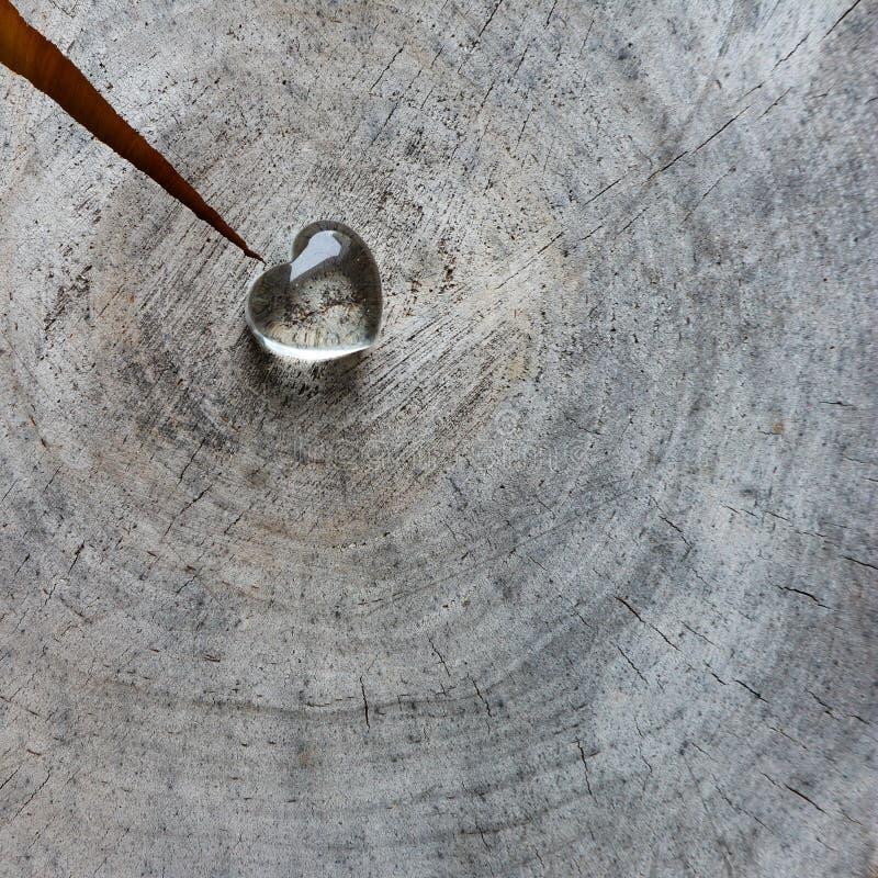 Corazón transparente en una superficie áspera del sello resistido con los anillos de la madera vieja y de una grieta Tarjeta de f foto de archivo