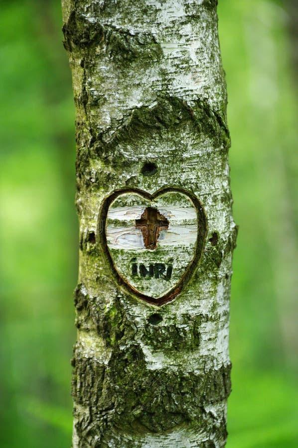 Corazón y cruz en el abedul de plata foto de archivo libre de regalías