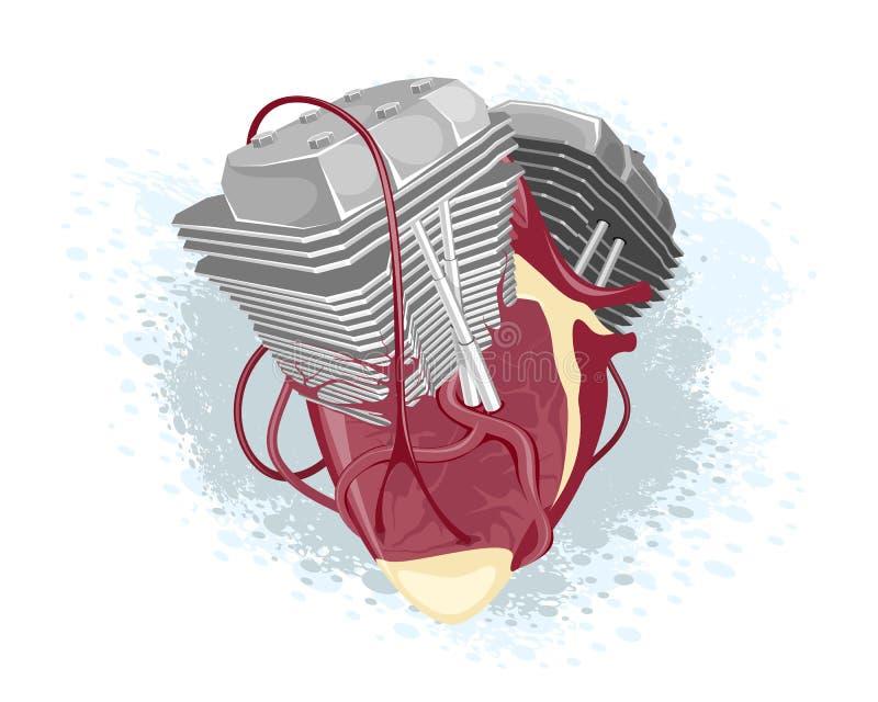 Corazón y motor anatómicos stock de ilustración