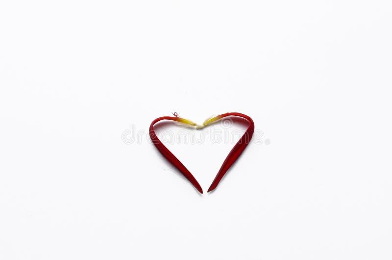Coraz?n hecho de los p?talos color de rosa aislados en el fondo blanco romance Copie el espacio imagen de archivo libre de regalías
