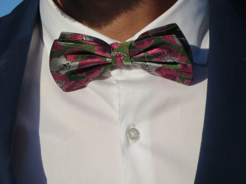 Corbata de lazo de un caballero de colores intensos y muy discreto hermosos imagen de archivo