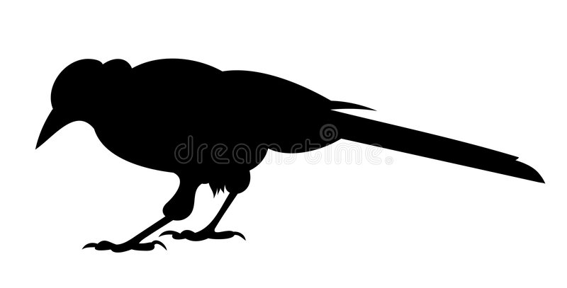 Corbeau noir illustration libre de droits
