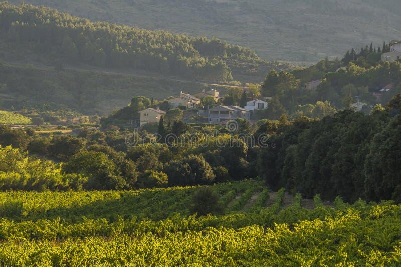 Corbieres berg, Frankrike arkivfoto