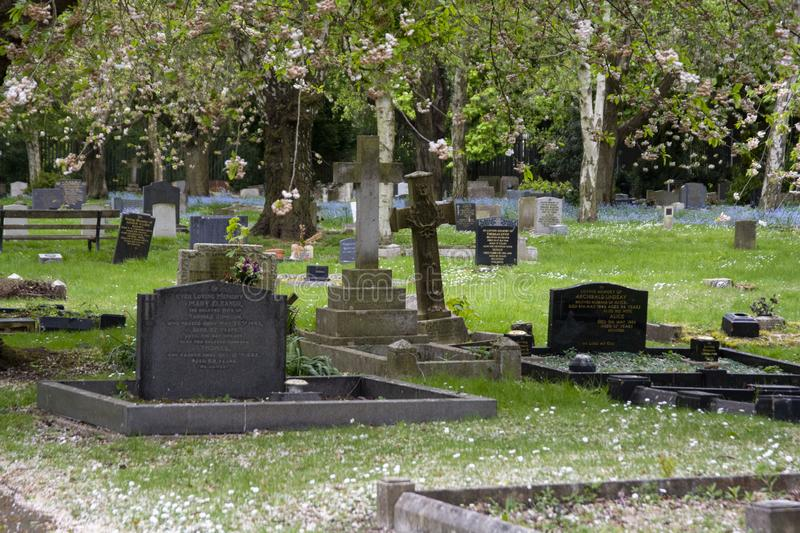 Corby, U.K, April 28, 2019 - -Tombstones in cemetery, spring time. Corby, U.K, April 28 2019 - -Tombstones in cemetery spring time background tree summer stock images