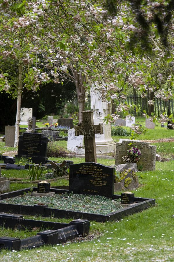 Corby, U.K, April 28, 2019 - -Tombstones in cemetery, spring time. Corby, U.K, April 28 2019 - -Tombstones in cemetery spring time background tree summer royalty free stock photography