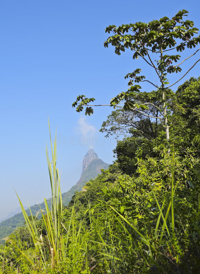 Corcovado Mountain. Brazil, City of Rio de Janeiro, Christ the Redeemer Statue on top of the Corcovado Mountain viewed from Santa Marta royalty free stock photo